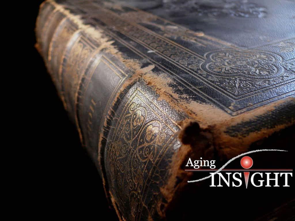 elder-law-bible-stories