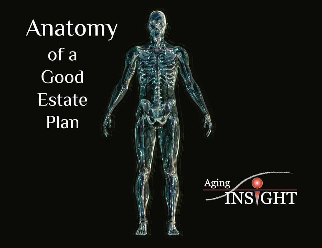 anatomy-good-estate-plan-skeleton
